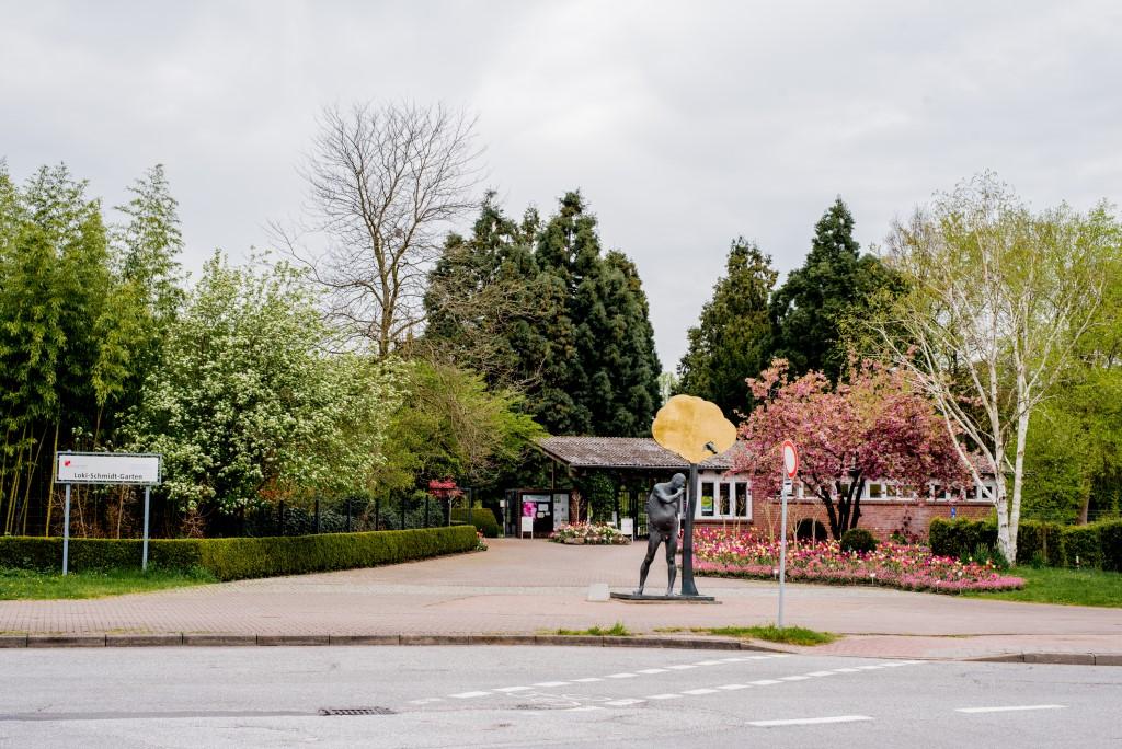 Loki Schmidt Haus / Museu Botânico